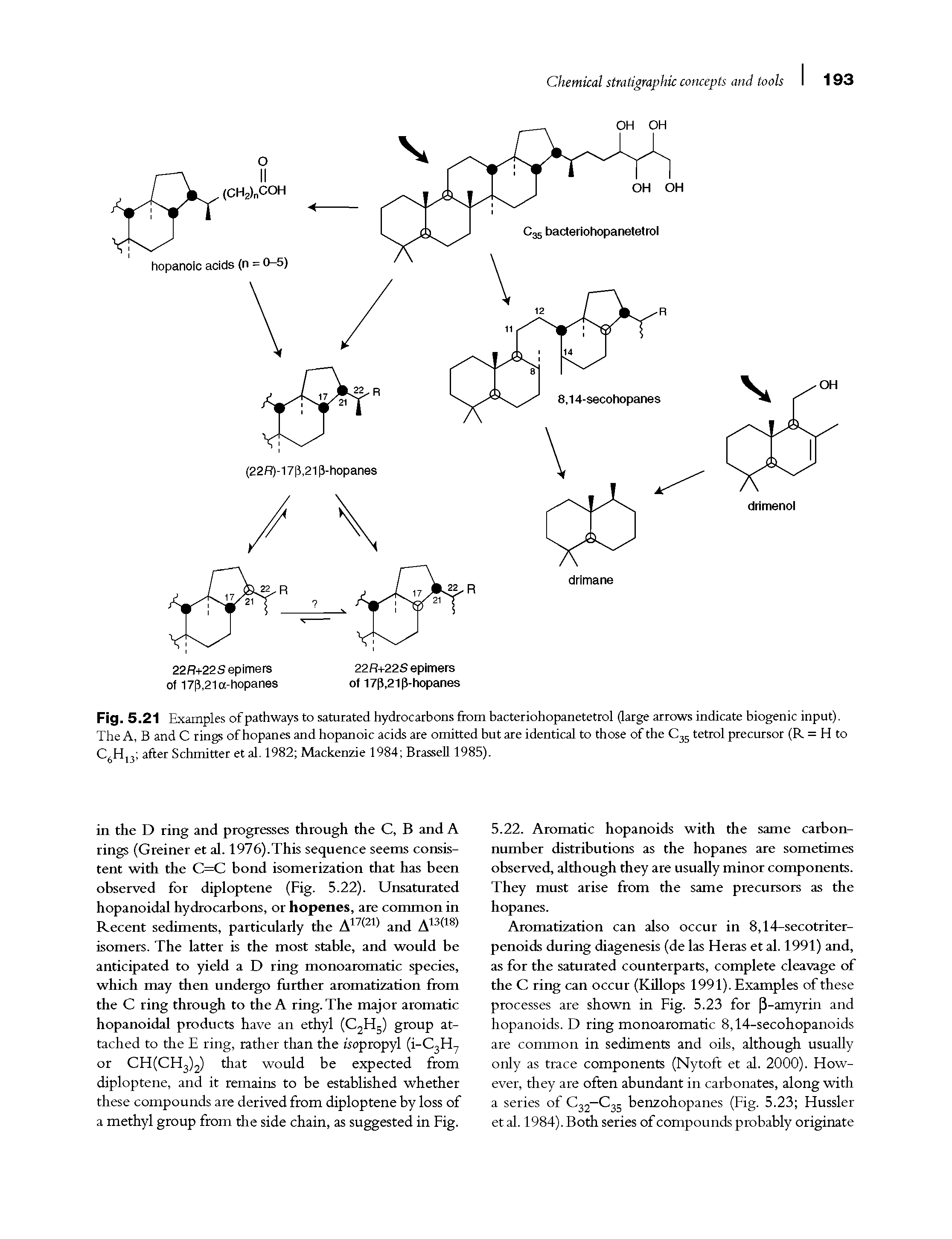 Fig. 5.21 Examples of pathways to saturated hydrocarbons from bacteriohopanetetrol (large arrows indicate biogenic input). The A, B and C rings of hopanes and hopanoic acids are omitted but are identical to those of the C35 tetrol precursor (R = H to C6H13 after Schmitter et al. 1982 Mackenzie 1984 Brassell 1985).