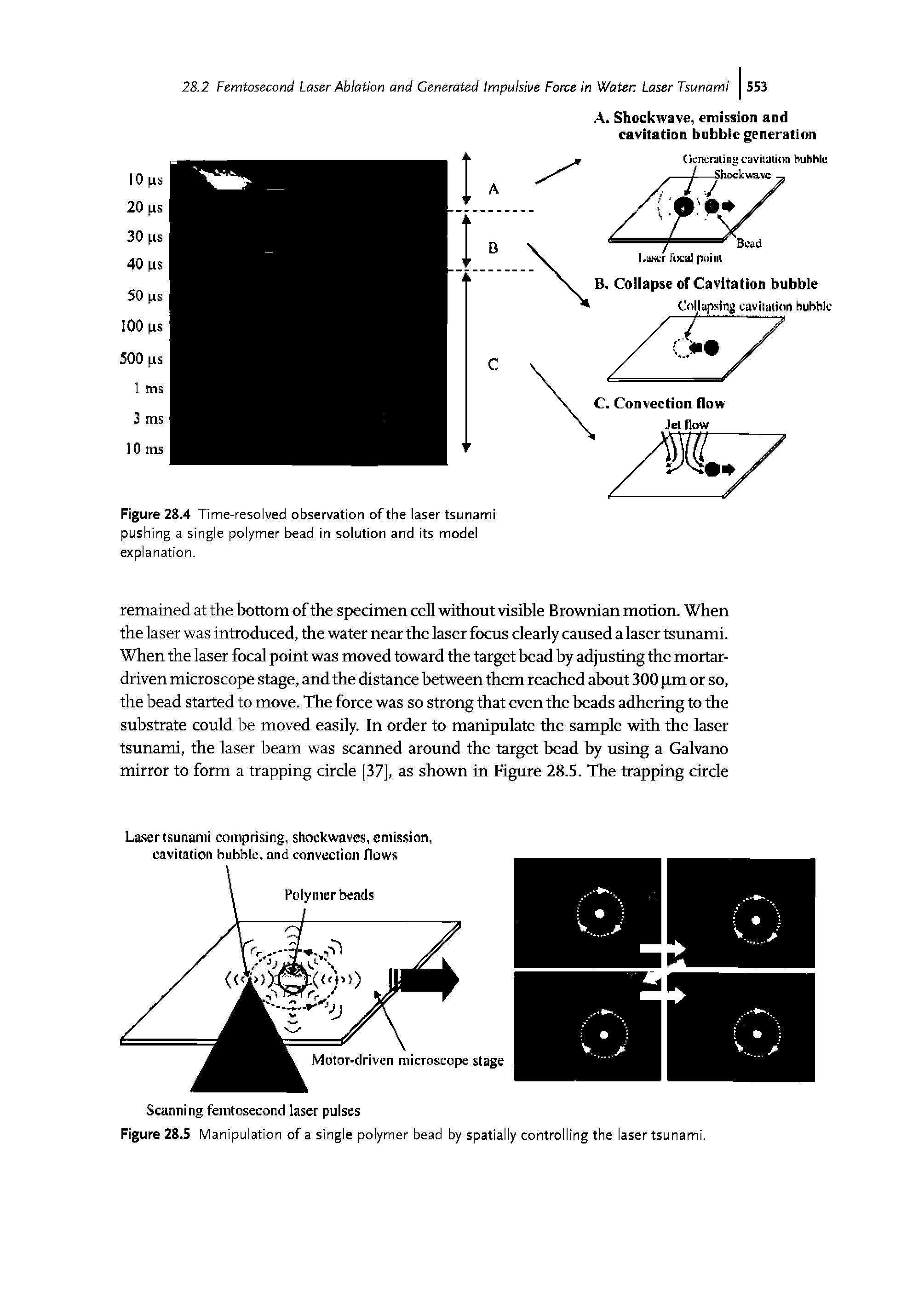"Figure 28.4 Time-resolved observation of the laser tsunami pushing a <a href=""/info/polymer_single"">single polymer</a> bead in solution and its model explanation."