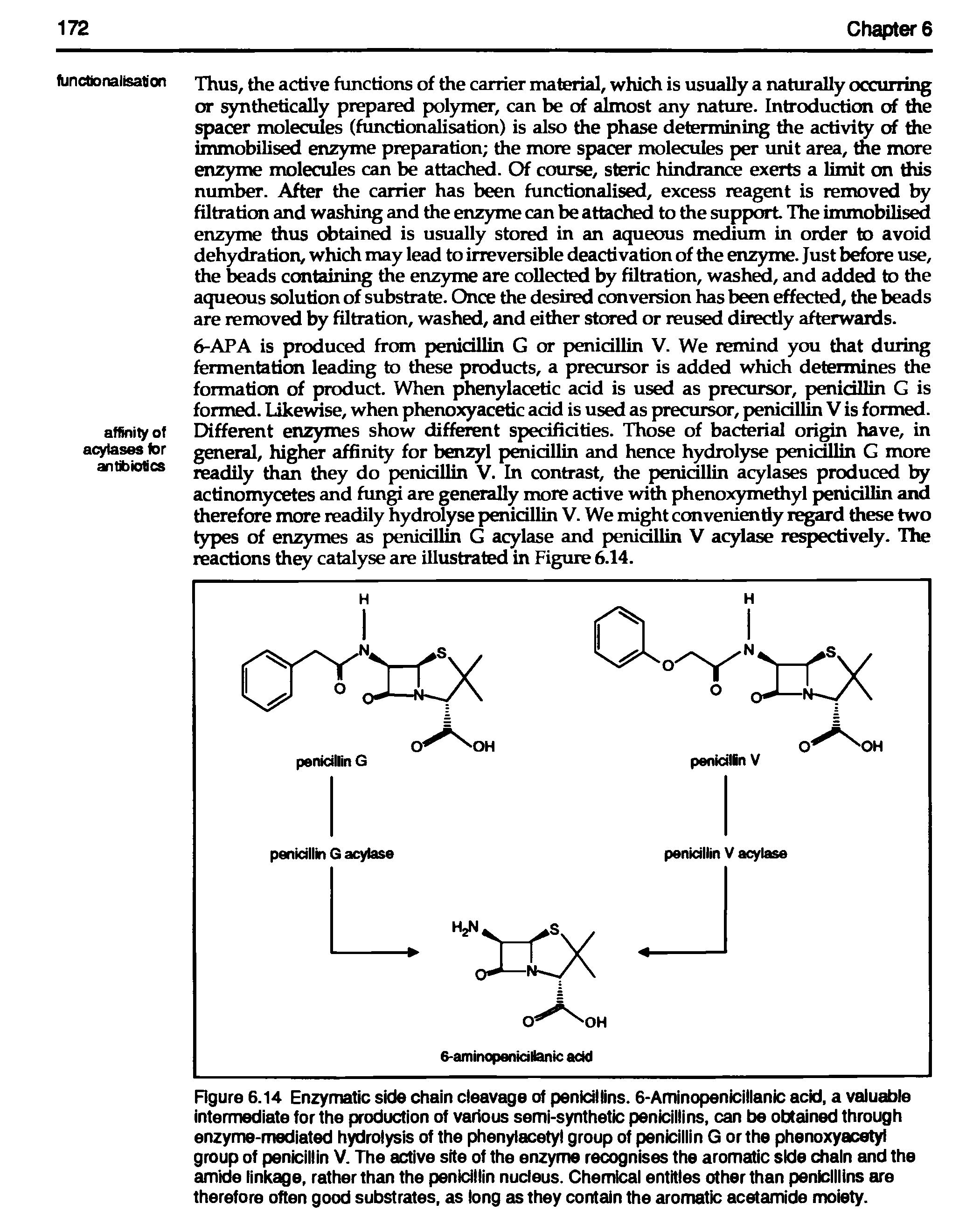 Figure 6.14 Enzymatic side chain cleavage of penicillins. 6-Aminopenicillanic acid, a valuable intermediate for the production of various semi-synthetic penicillins, can be obtained through enzyme-mediated hydrolysis of the phenylacety group of penicillin G or the phenoxyacetyl group of penicillin V. The active site of the enzyme recognises the aromatic side chain and the amide linkage, rather than the penidllin nucleus. Chemical entitles other than penicillins are therefore often good substrates, as long as they contain the aromatic acetamide moiety.