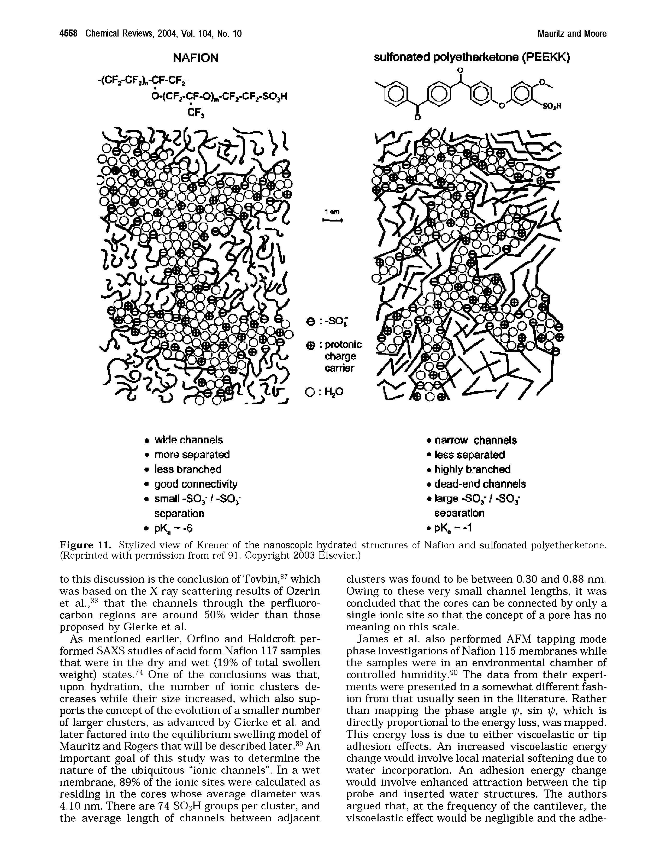 Figure 11. Stylized view of Kreuer of the nanoscopic hydrated structures of Nafion and sulfonated polyetherketone. (Reprinted with permission from ref 91. Copyright 2003 Elsevier.)...