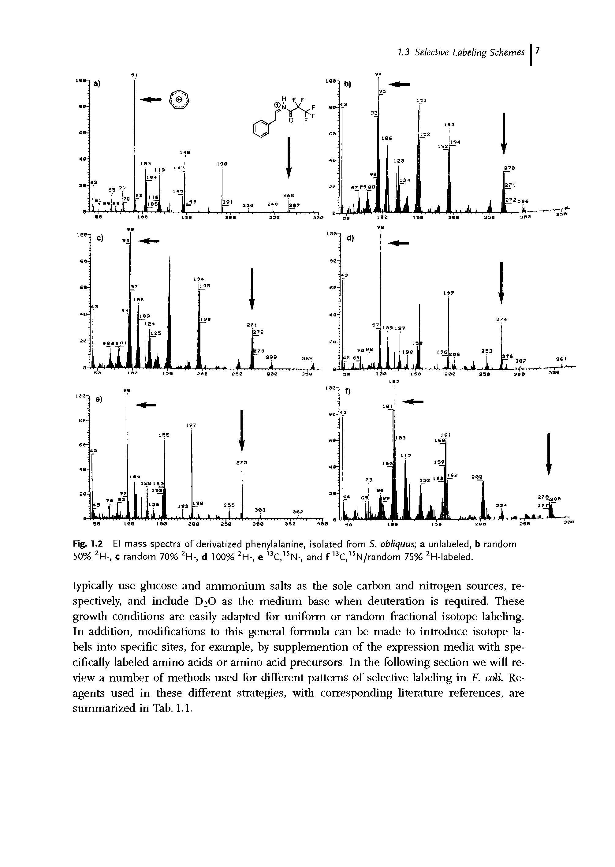 Fig. 1.2 El mass spectra of derivatized phenylalanine, isolated from 5. obliquus a unlabeled, b random 50% 2H-, c random 70% 2H-, d 100% 2H-, e 3C, 5N-, and f 13C, 5N/random 75% 2H-labeled.