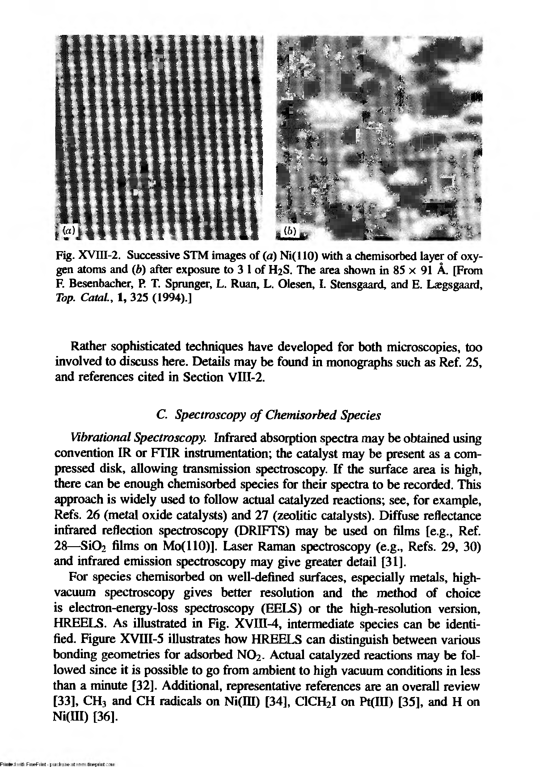 Fig. XVni-2. Successive STM images of (a) Ni(llO) with a chemisorbed layer of oxygen atoms and (b) after exposure to 3 1 of H2S. The area shown in 85 x 91 A. [From F. Besenbacher, P. T. Sprunger, L. Ruan, L. Olesen, I. Stensgaard, and E. Lcegsgaard, Tap. Catal., 1, 325 (1994).]...