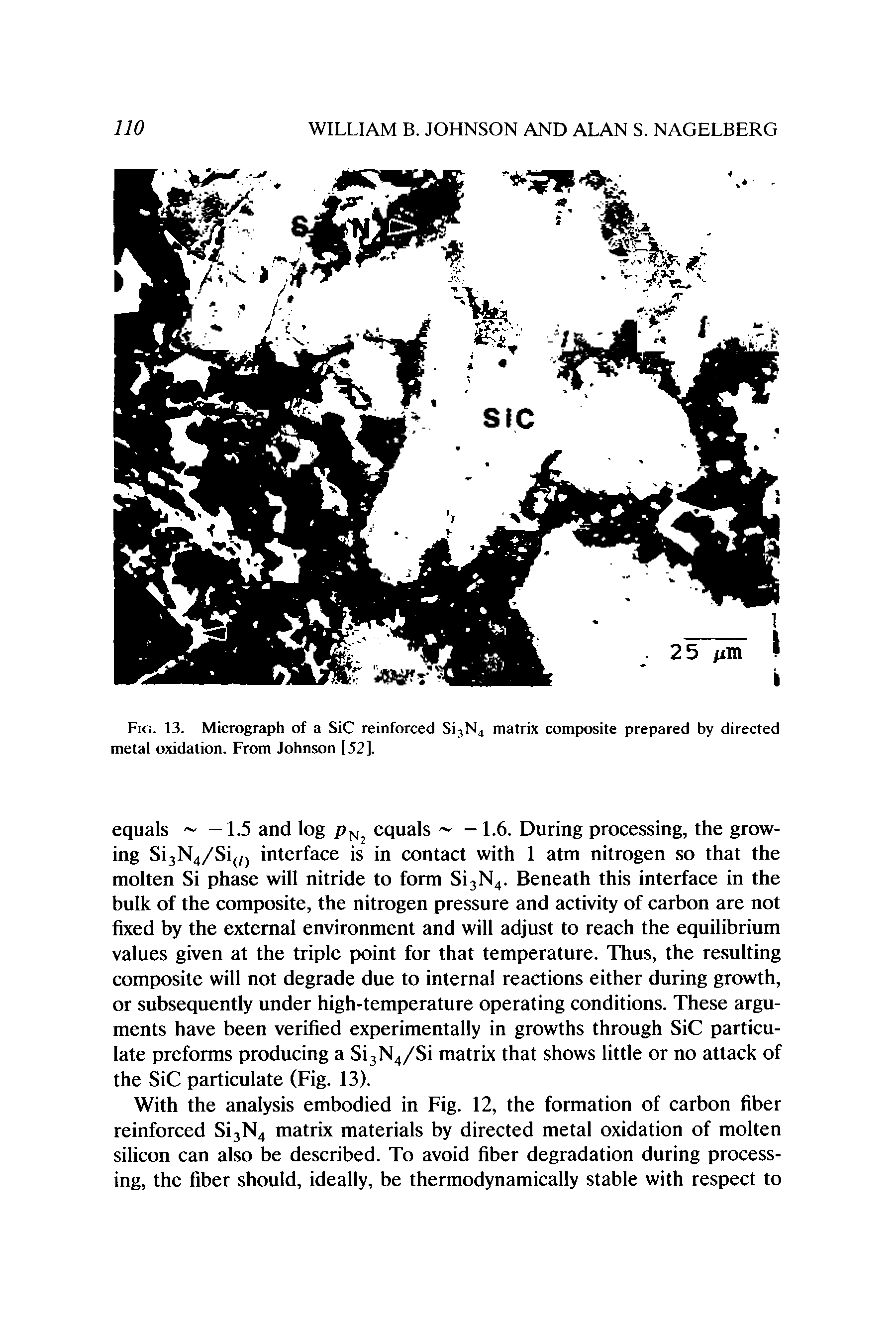 "Fig. 13. Micrograph of a SiC reinforced Si, N4 <a href=""/info/mg_li_matrix_composite"">matrix composite</a> prepared by directed metal oxidation. From Johnson [52]."