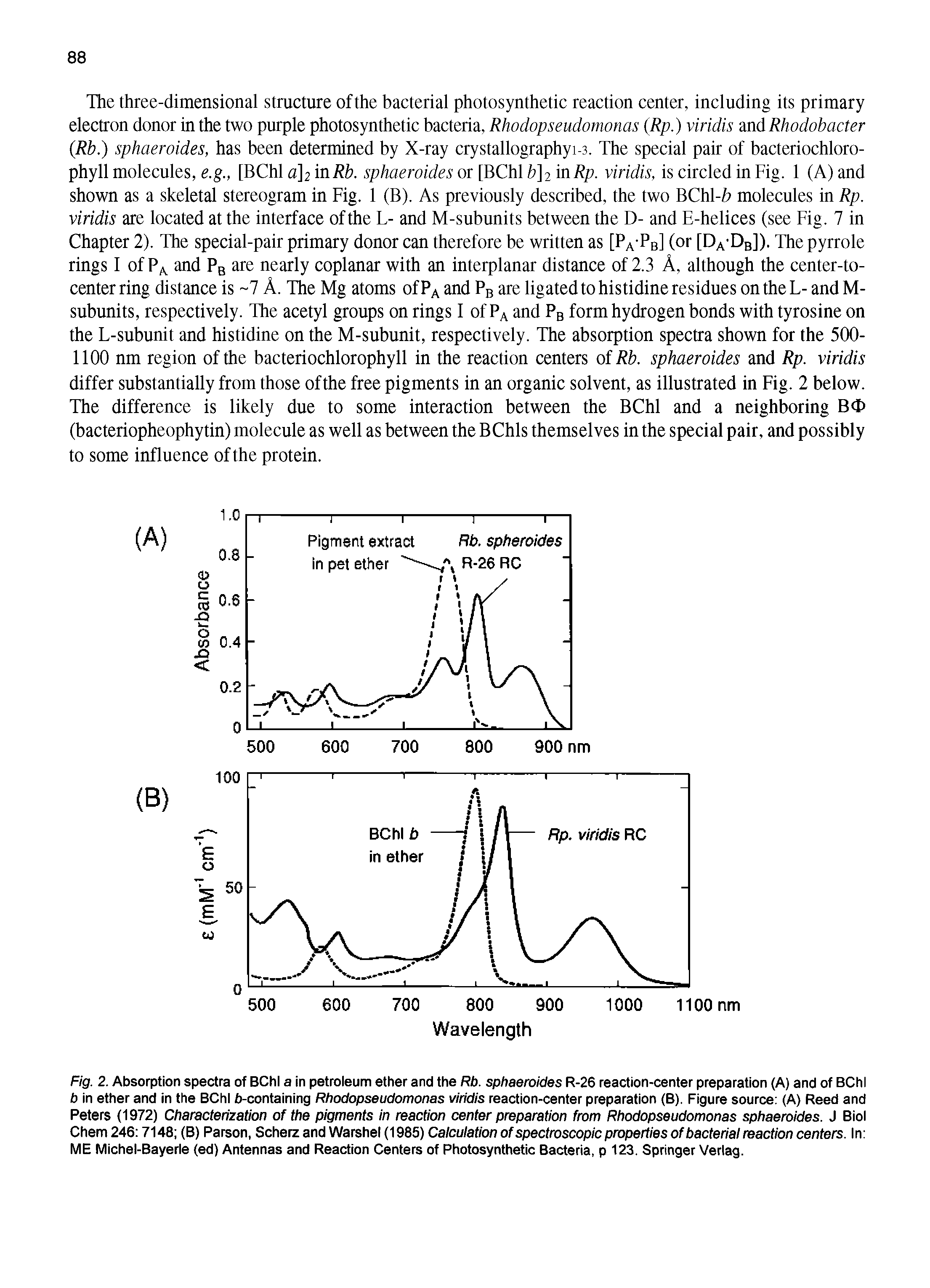 "Fig. 2. <a href=""/info/absorption_spectra"">Absorption spectra</a> of BChl a in <a href=""/info/petroleum_ether"">petroleum ether</a> and the Rb. sphaeroides R-26 <a href=""/info/reaction_center"">reaction-center</a> preparation (A) and of BChl b in ether and in the BChl b-containing Rhodopseudomonas viridis reaction-center preparation (B). <a href=""/info/source_of_figures"">Figure source</a> (A) Reed and Peters (1972) Characterization of the pigments in <a href=""/info/reaction_center"">reaction center</a> <a href=""/info/preparation_from"">preparation from</a> <a href=""/info/rhodopseudomonas_sphaeroides"">Rhodopseudomonas sphaeroides</a>. J Biol Chem 246 7148 (B) Parson, Scherz and Warshel (1985) Calculation of <a href=""/info/property_spectroscopic"">spectroscopic properties</a> of <a href=""/info/bacterial_reaction_centers"">bacterial reaction centers</a>. In ME Michel-Bayerle (ed) Antennas and <a href=""/info/reaction_center"">Reaction Centers</a> of <a href=""/info/bacteria_photosynthetic"">Photosynthetic Bacteria</a>, p 123. Springer Verlag."