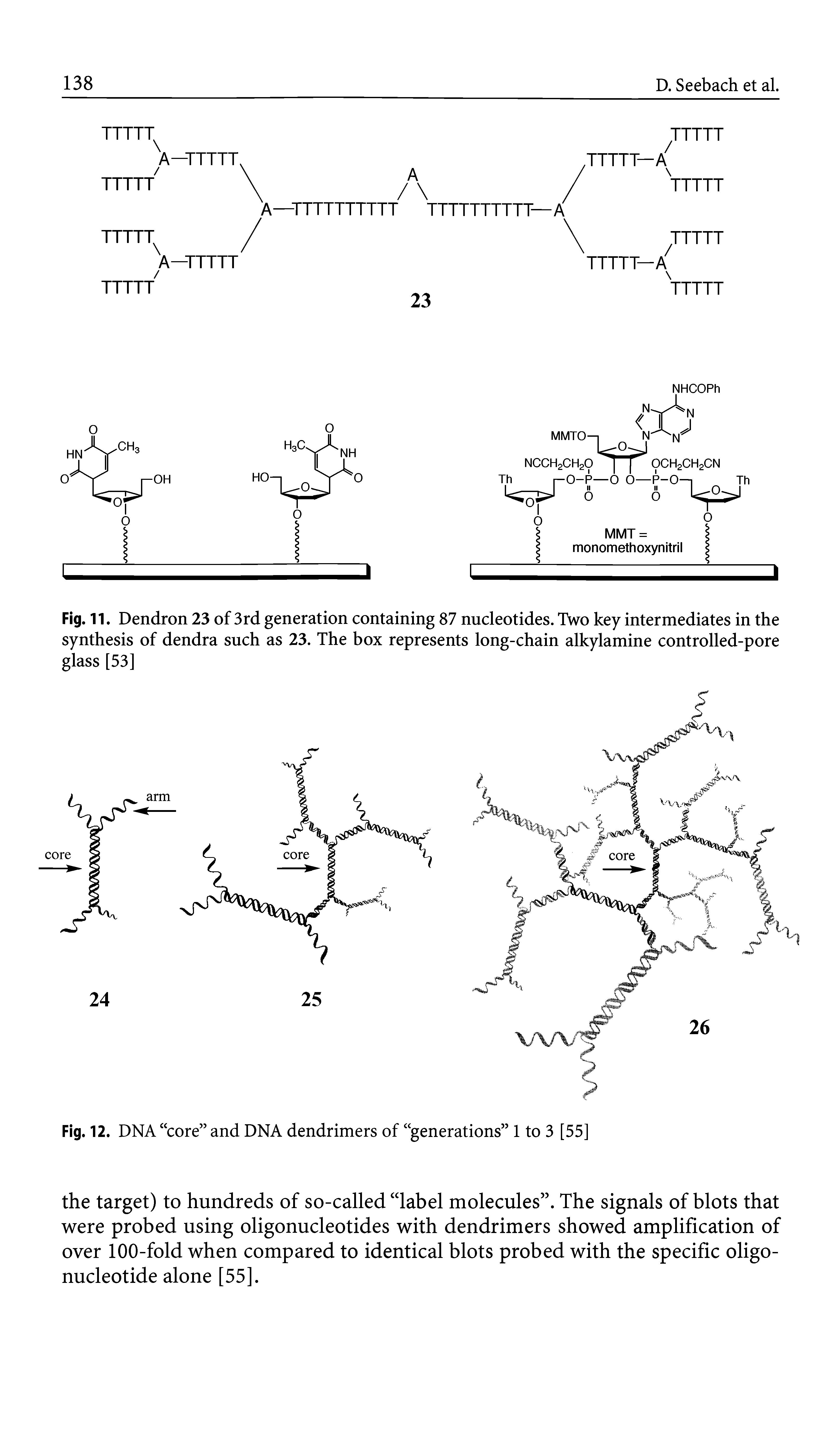 Fig. 11. Dendron 23 of 3rd generation containing 87 nucleotides. Two key intermediates in the synthesis of dendra such as 23. The box represents long-chain alkylamine controlled-pore glass [53]...